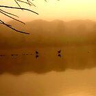 Morning Glaze by SammyKroc
