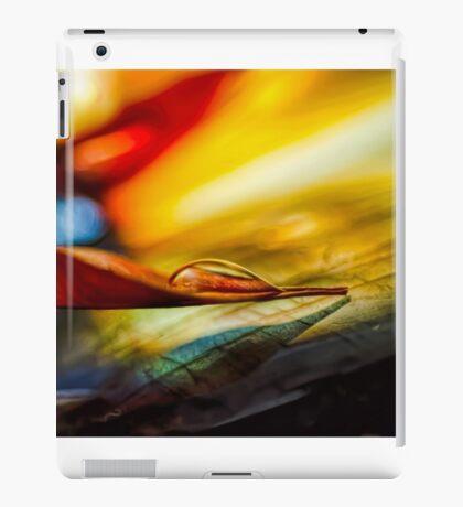 Agate Point iPad Case/Skin