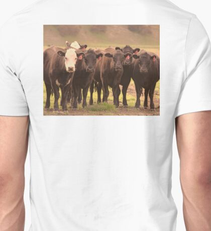 Curious Cows  Unisex T-Shirt