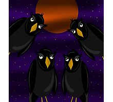 Halloween - Black ravens and bloody moon Photographic Print