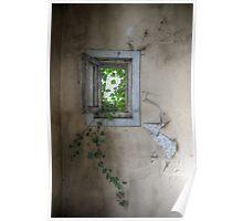 little window Poster