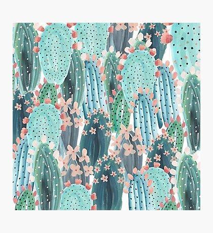 beautiful cactus Photographic Print
