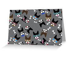 Boston Terrier Funny Faces Grey Greeting Card