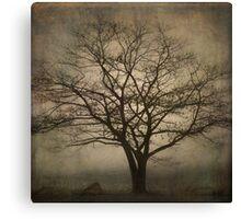 Lone Tree SQ Canvas Print