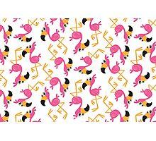 Cute Flamingo  Photographic Print