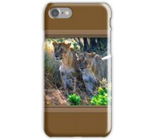 Out Of Africa #4 iPhone Case/Skin