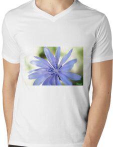 Chicory Flower Mens V-Neck T-Shirt