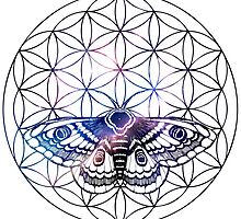 Flower of Life Moth by Freja Friborg