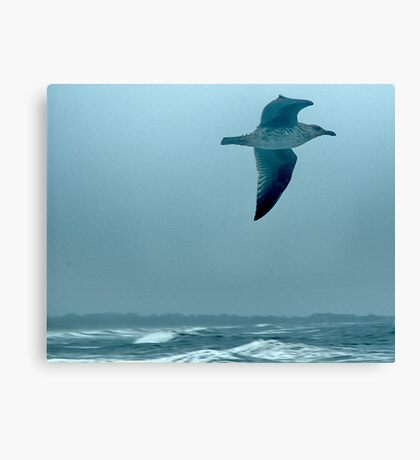 Above the Waves Canvas Print