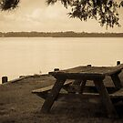 Picnic Table by WeeZie