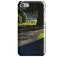 Serenity of old trees iPhone Case/Skin