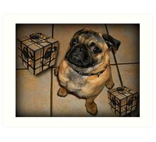 *•.¸♥♥¸.•*DON'T U BE CALLING ME SQUARE - PUG PICTURE - CARD*•.¸♥♥¸.•* Art Print