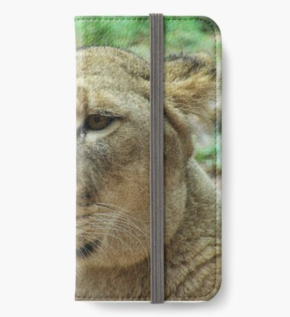 the angry lioness iPhone Wallet/Case/Skin