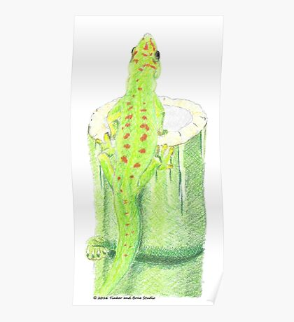 Day Gecko on Bamboo Poster