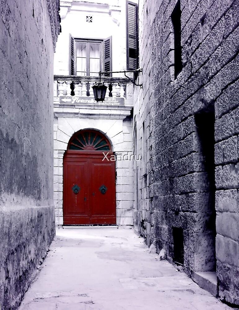The Red Door by Xandru