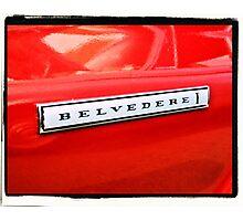 Belvedere Emblem Photographic Print