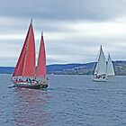 Sailing on Taupo by Graeme  Hyde