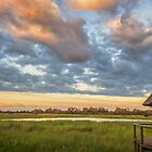 Banoka Morning by Owed to Nature