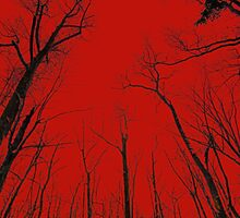 Red Cathedral by MotherNature2