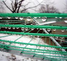 Raindrops by Susan S. Kline