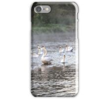 Swans and mist on River Test iPhone Case/Skin