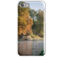 Swans on River Test iPhone Case/Skin