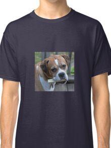 Boxer, Dog, Marley, Pet Classic T-Shirt