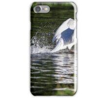 Swan landing on river iPhone Case/Skin