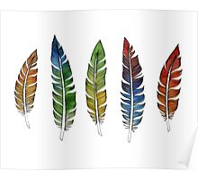 Rainbow Feathers Poster