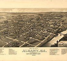 Vintage Pictorial Map of Albany Georgia (1885)  by BravuraMedia