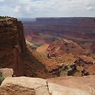 Dead Horse Point (E) - Canyonlands, UT by dolphinandcow