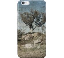 Box Hill iPhone Case/Skin