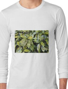 Green leaves pattern Long Sleeve T-Shirt
