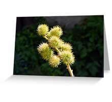 Natural green branch with spikes Greeting Card