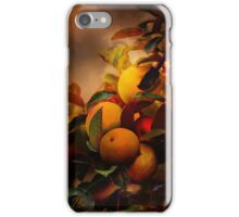 Apples in Fall - A Living Still Life iPhone Case/Skin
