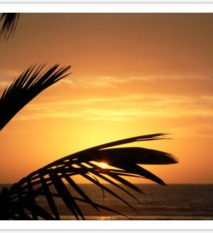 Sunset in Raro Sticker
