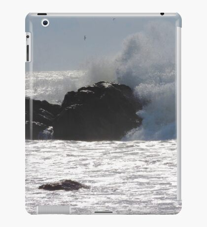 Tywyn Splash iPad Case/Skin