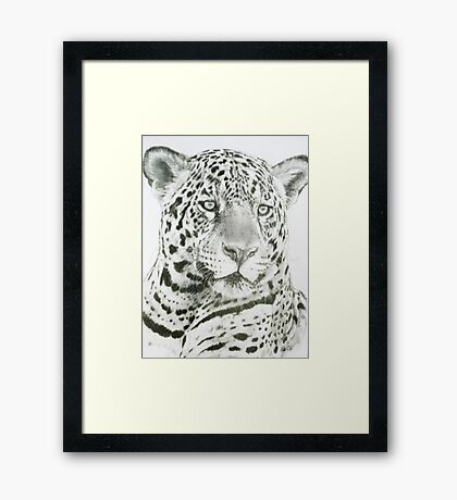 Placate Framed Print