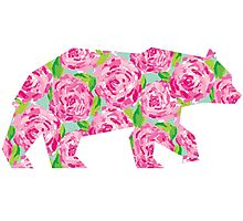 Lilly Pulitzer Rose Geometric Bear Photographic Print