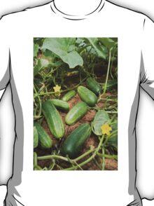 Cucumbers T-Shirt