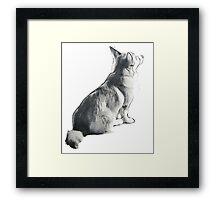 Corgi sitting - greyscale Framed Print