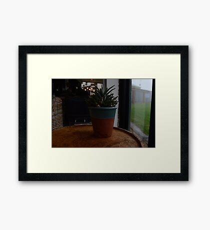 Cafe Plant Framed Print