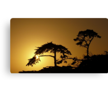 #260      Sunset From Pebble Beach Canvas Print