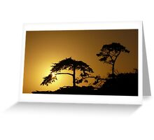 #260      Sunset From Pebble Beach Greeting Card