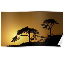 #260      Sunset From Pebble Beach Poster