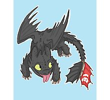Toothless! Photographic Print