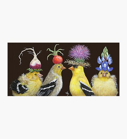 Goldfinch Family Photographic Print
