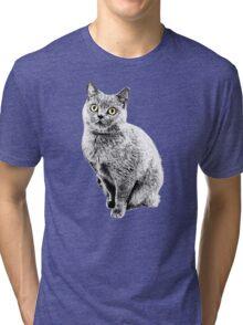 Stone Cate Tri-blend T-Shirt