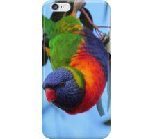 Bat bird! iPhone Case/Skin