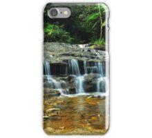 Bottom Of The Cascade iPhone Case/Skin